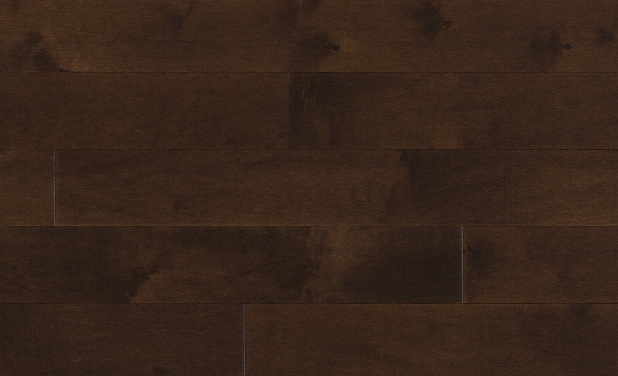 Mercier Hard Maple Medium Brown Solid Width: 2 1/4