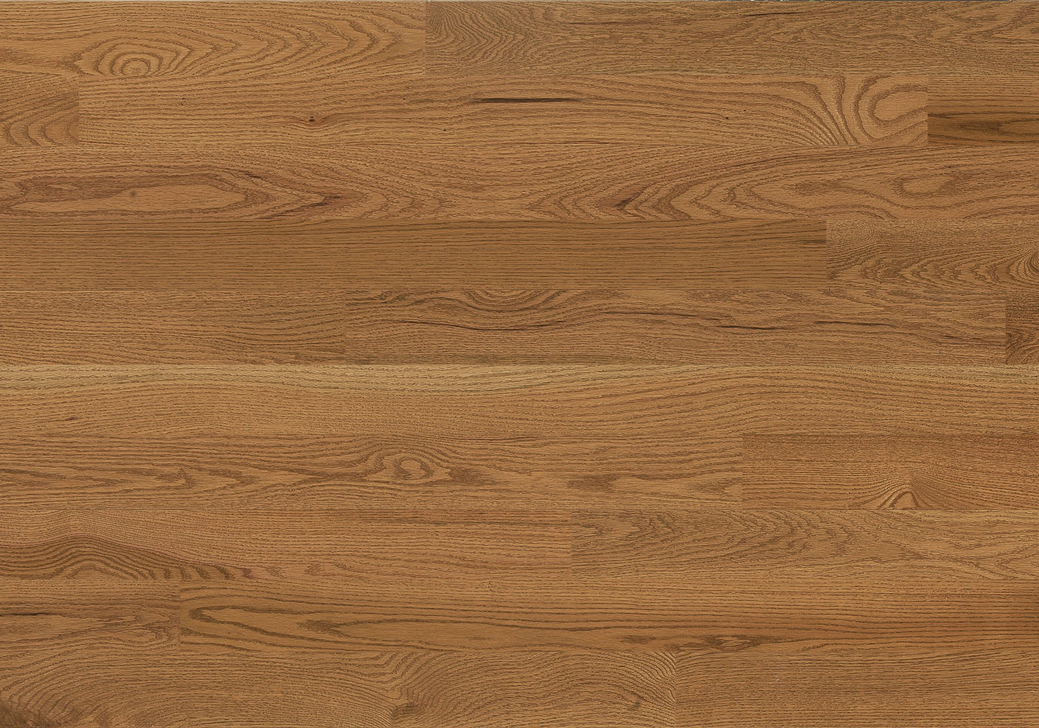 Red Oak Creme Brulee Expert Engineered Wire Brushed 3-1/8